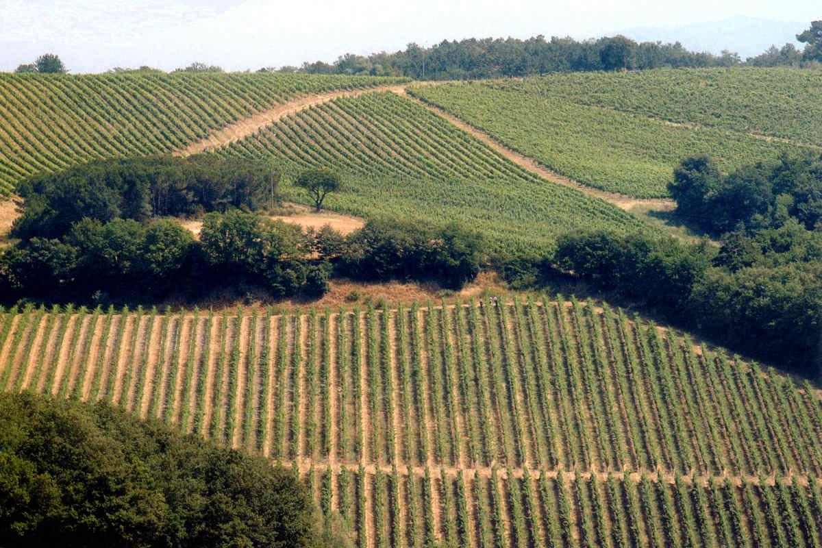 Casale Toscana vendita Val d'Orcia vicino a Montalcino